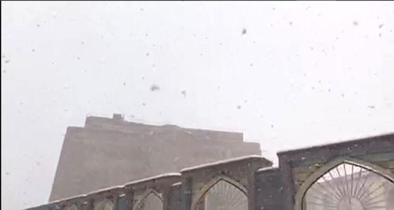 هماکنون بارش برف در تبریز +فیلم