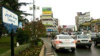 اصرار شهرداری منطقه یک برای اجرای طرحی قدیمی/ ۲۰۰درخت تاریخی خیابان ولیعصر با احداث زیرگذر تجریش از بین میرود
