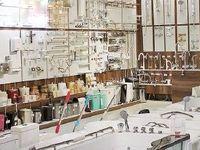 بازار در تسخیر شیرهای ایرانی