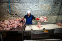 چرا مرغ با قیمت مصوب تحویل مردم نمیشود؟ +فیلم