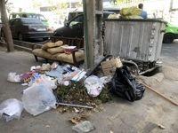 در سطل زبالههای تهران چه خبر است؟